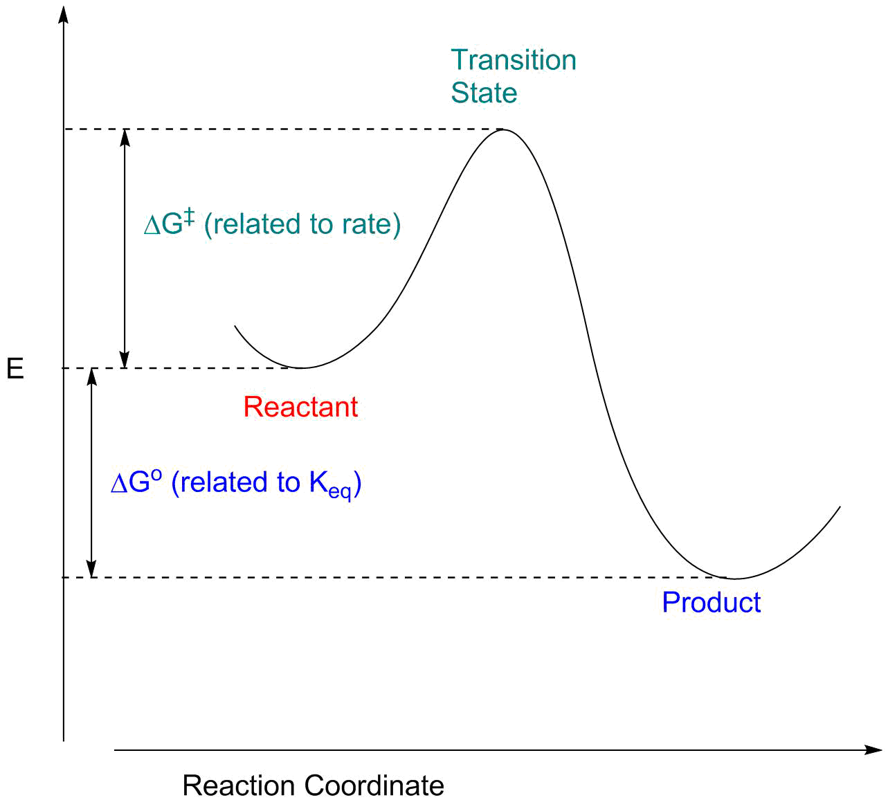 Reaction Energy Profiles